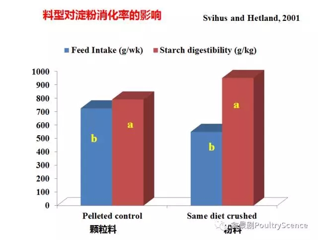 Mingan Choct: Re-understanding the quality and energy value of starch (new corn is launched)